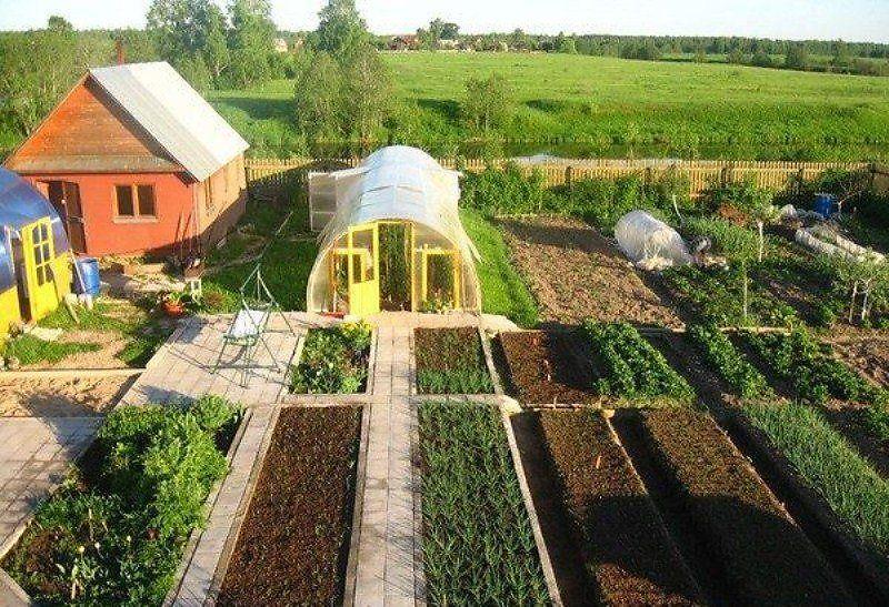 Огород в частном доме фото