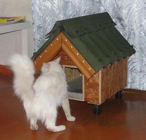Как сделать будку кошке