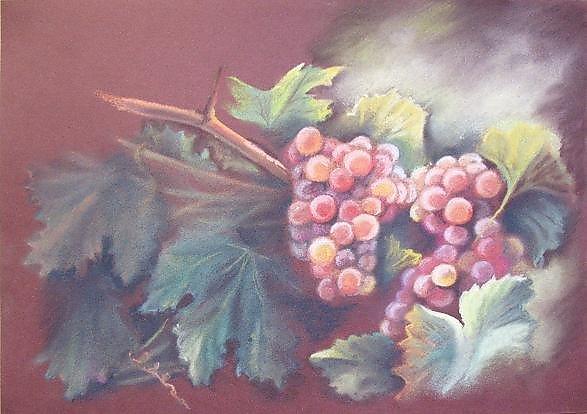 Виноград рисуют пастелью 152