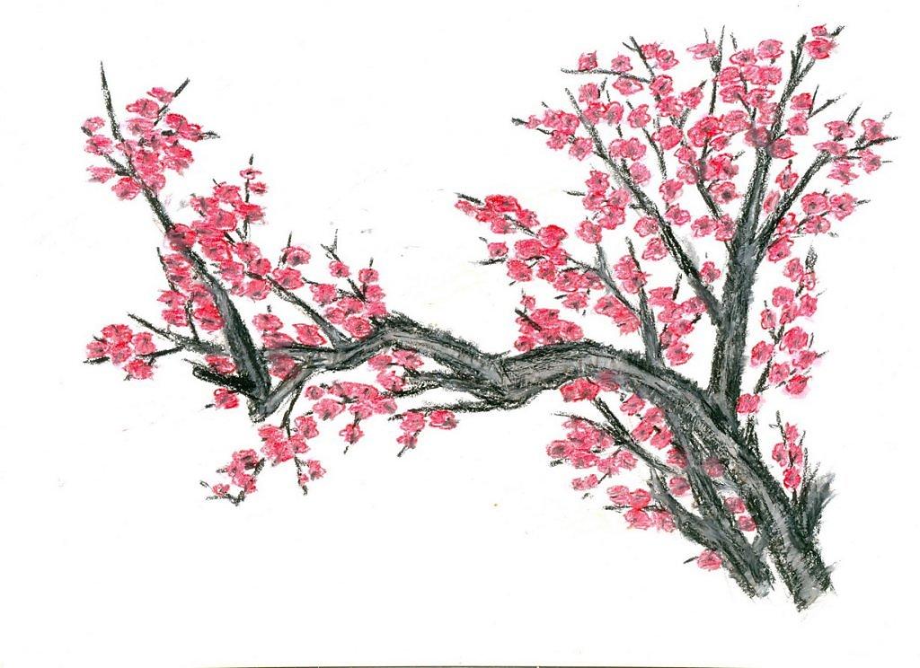 Рисунки пастелью сакуру