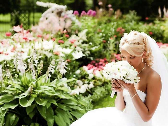 Фото цветов невеста