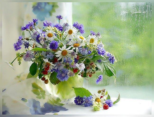 http://www.neizvestniy-geniy.ru/images/works/photo/2013/05/933229_1.jpg