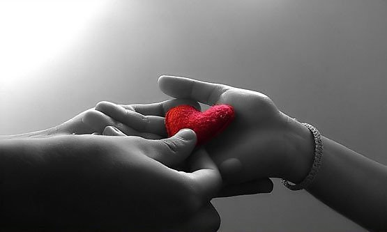 Отдам любовь в хорошие руки сердючка