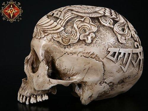 Резьба по черепу животных своими руками 78