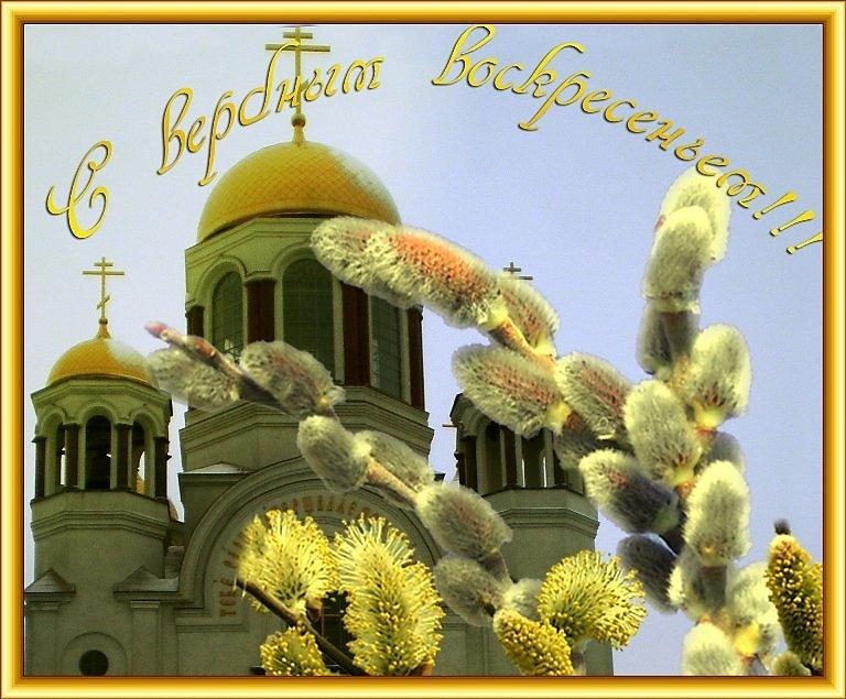 Хорошего, красивые открытки к вербной