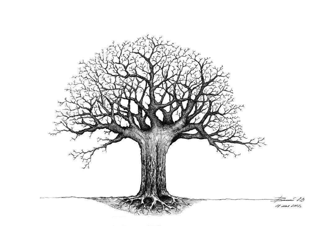 дерево рисунок графика получается очень большой