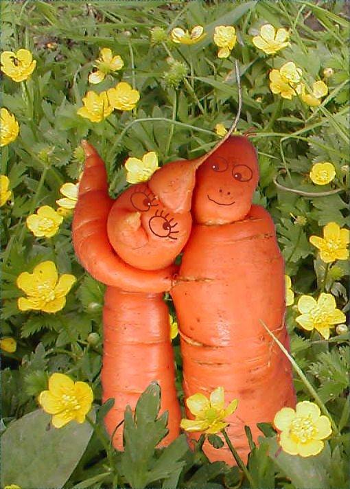 Пиццей, картинки любовь-морковь