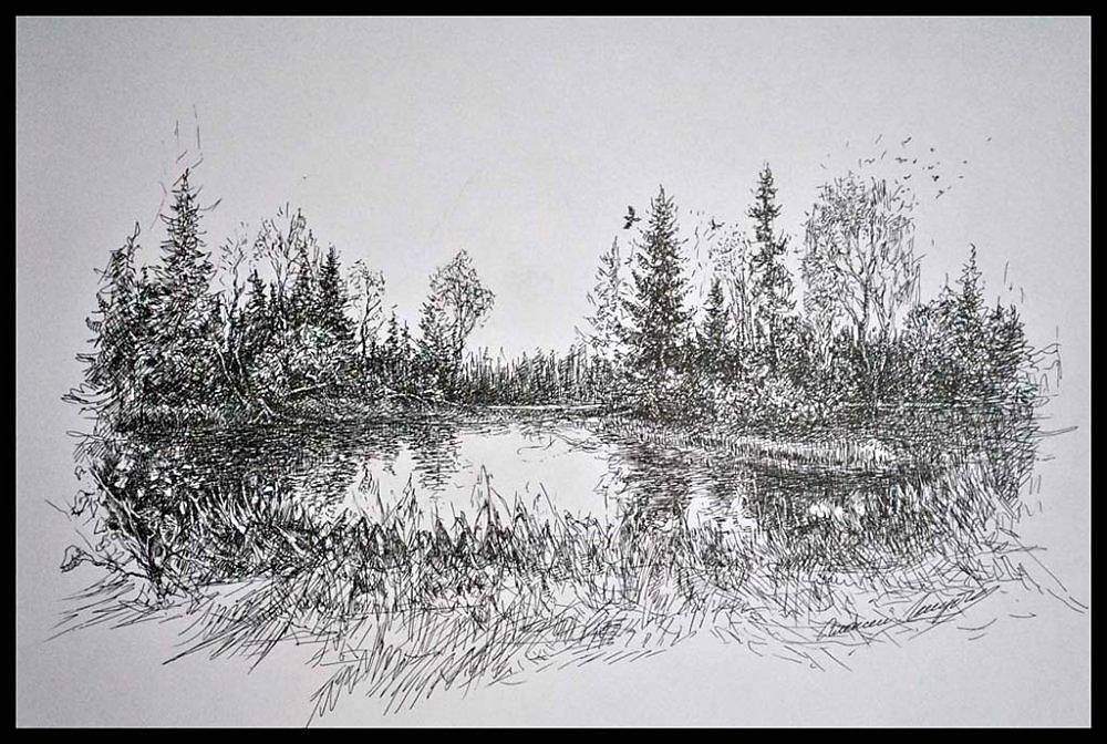 Картинки как нарисовать лес и озеро простым карандашом