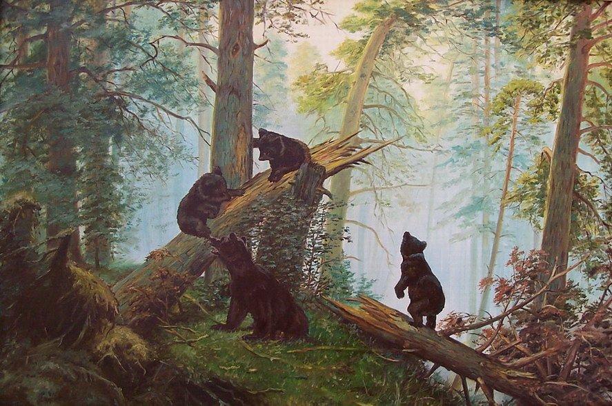 утро в сосновом лесу картинки девочка поняла
