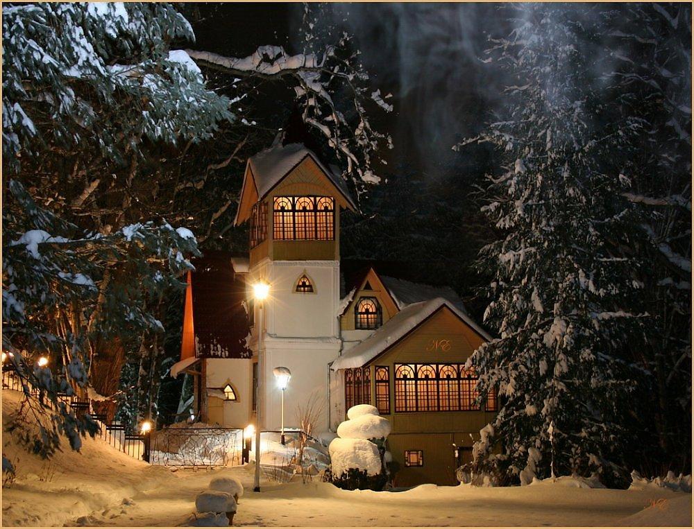 органы системы сказочный зимний вечер фото можете при сканировании