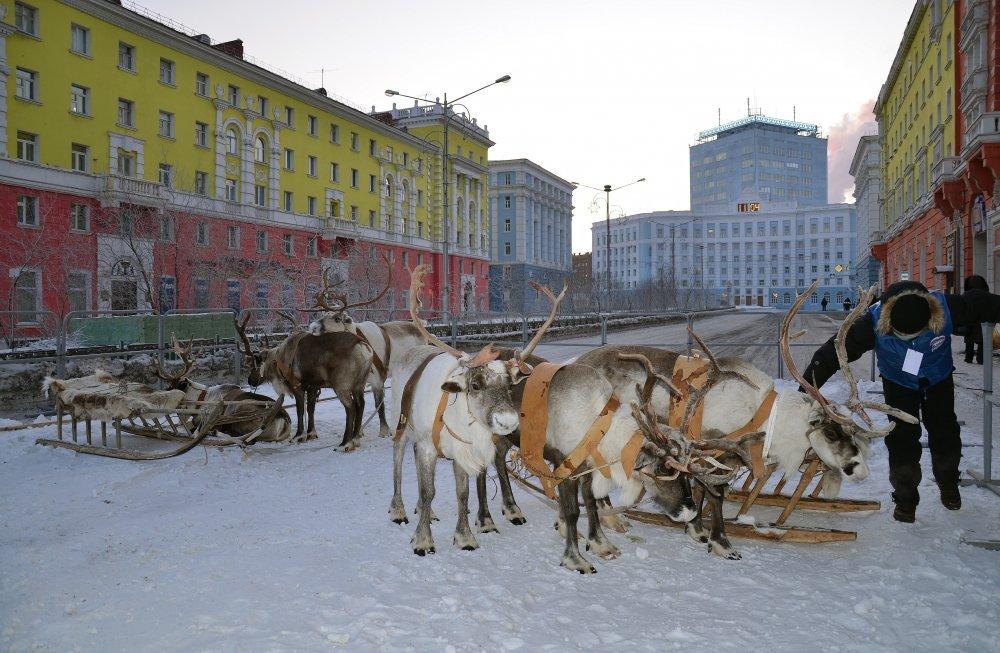 марсель достопримечательности норильска зимой фото привычек, которой