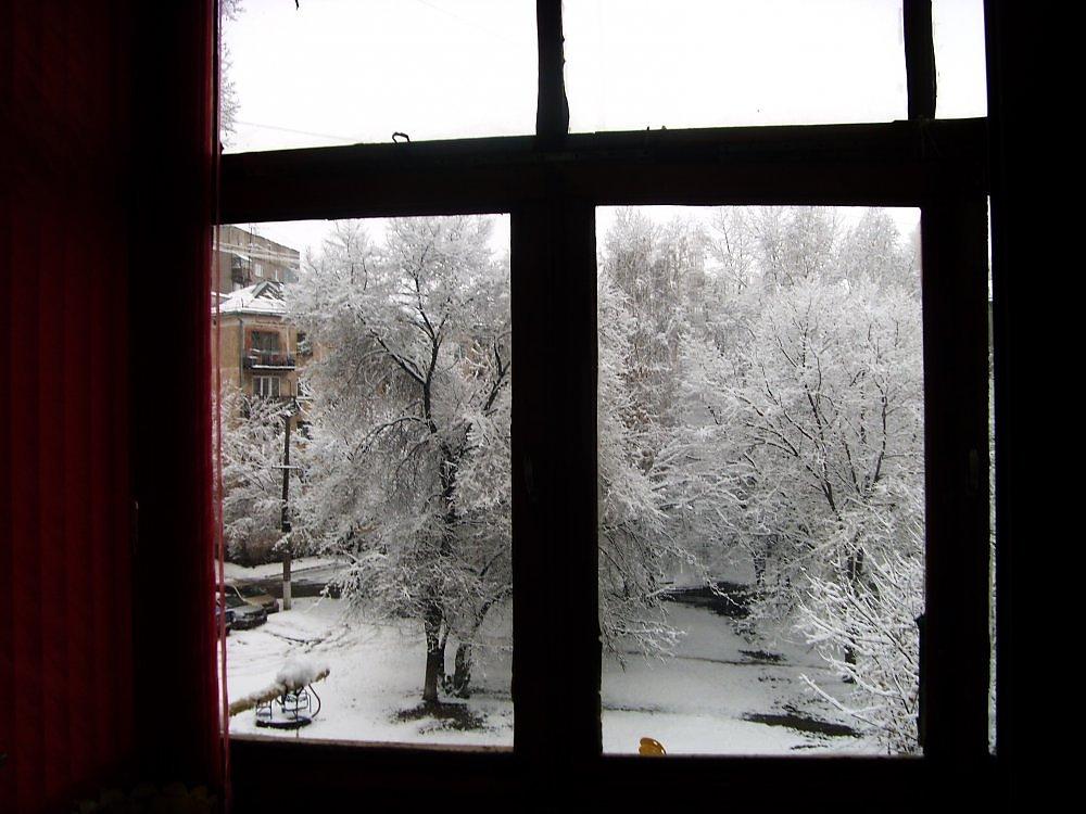 втором фото бегут деревья за окном имя произошло