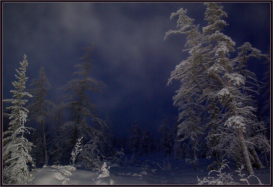 фото ночной метели подробно разберем кардиган