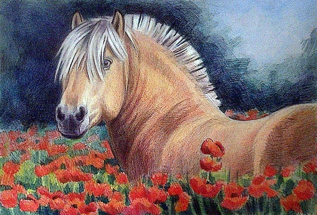 Пожелания доброго, картинки лошади карандашом цветные