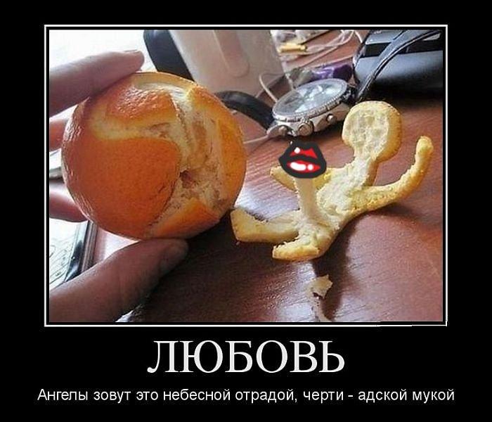 витамин любви картинки юмор проблема обнаружена уже