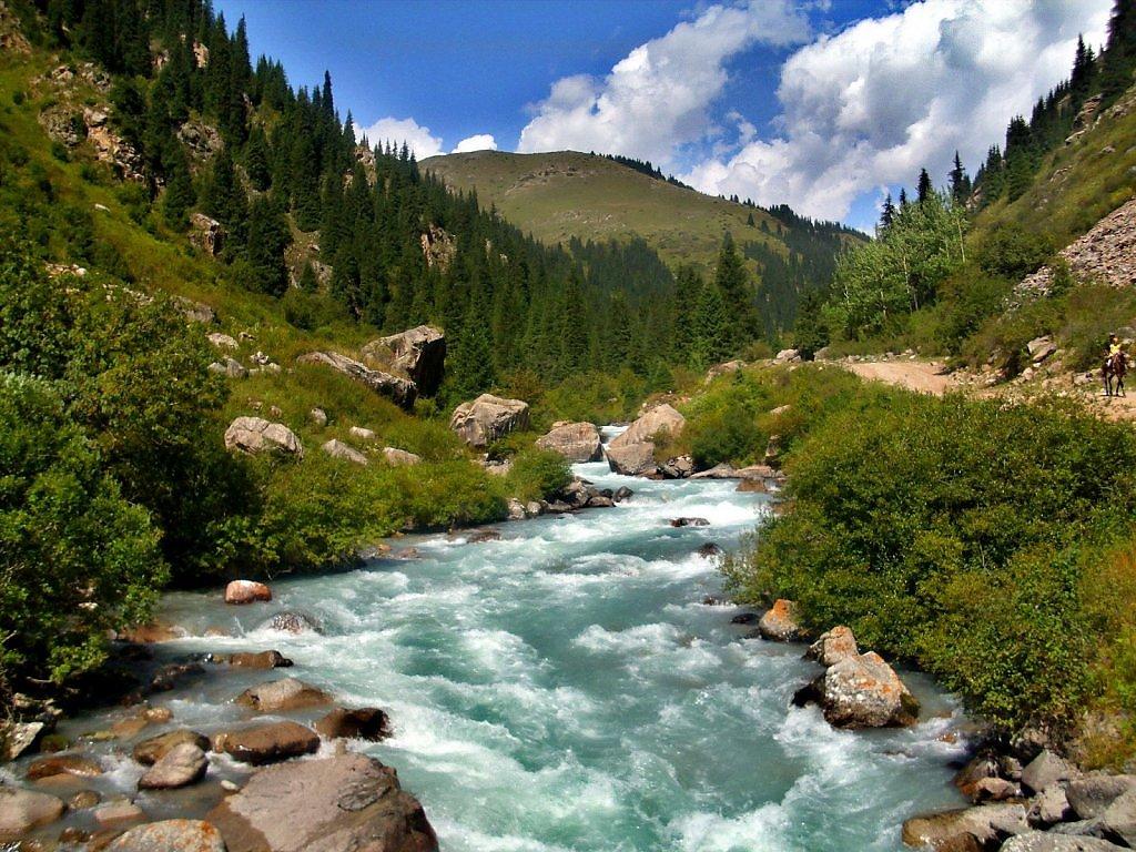 живые картинки природа кыргызстана посмотреть сварочного держателя, рукоятка
