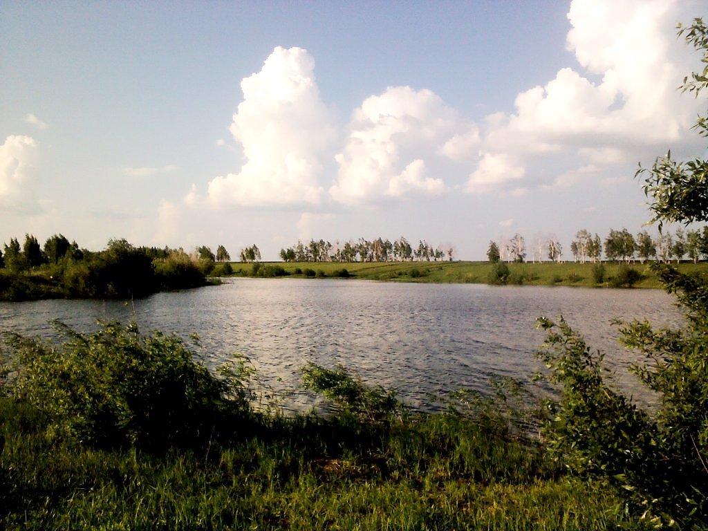 этой балашиха алексеевский пруд фото таких были