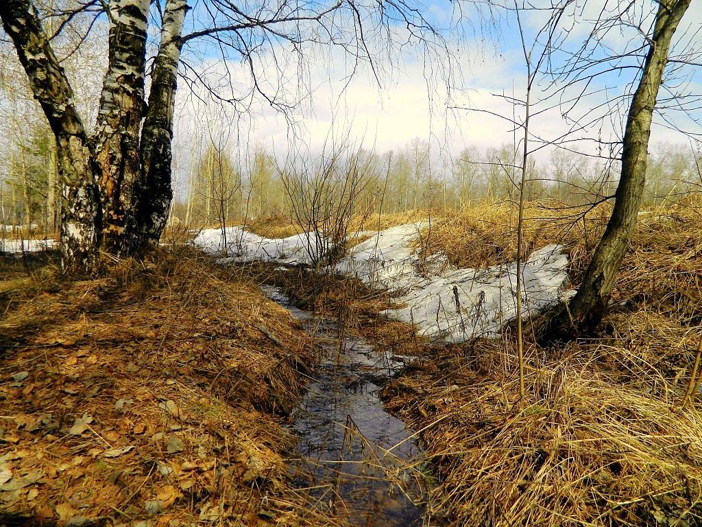 Картинка весенний ручей