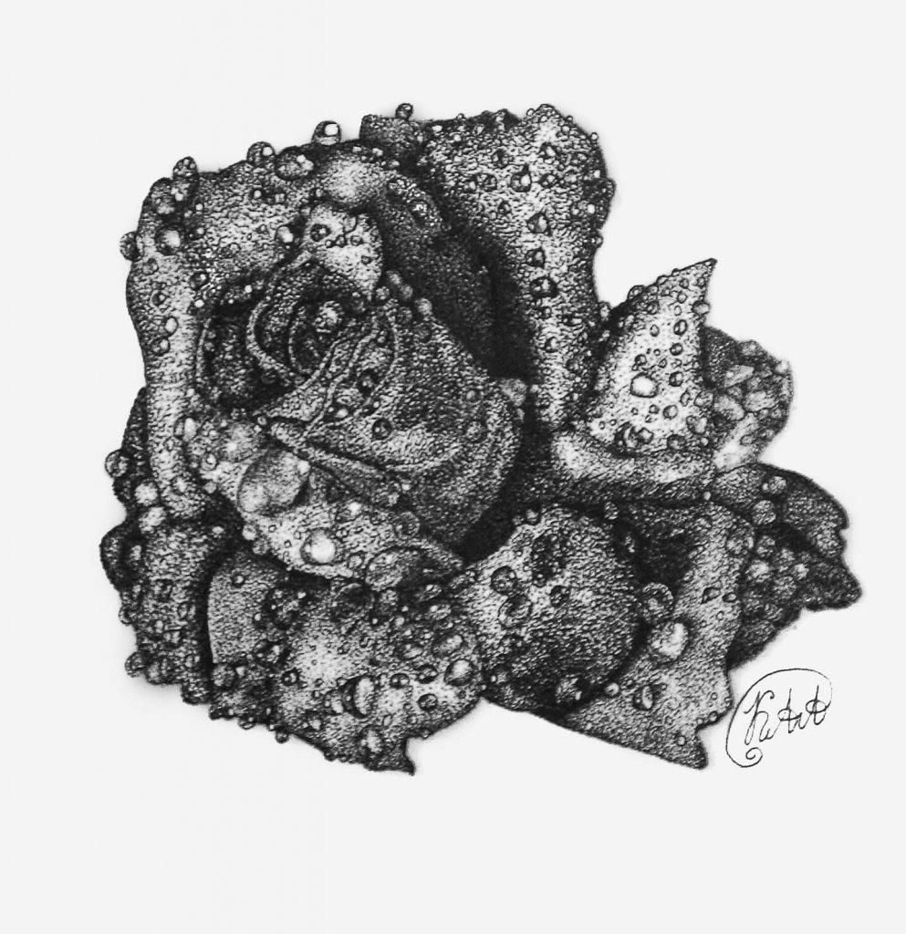 картинки черной гелевой ручкой розы это миниатюрная