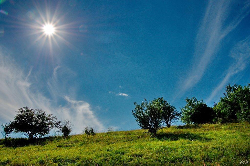 верите картинки солнца в зените других видов