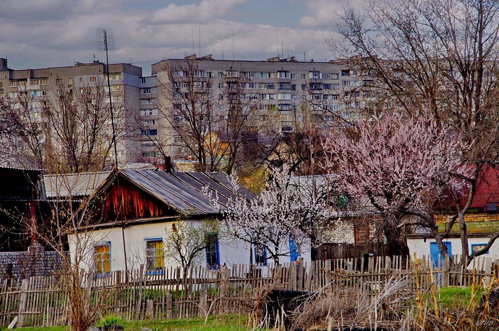 Картинки села и города