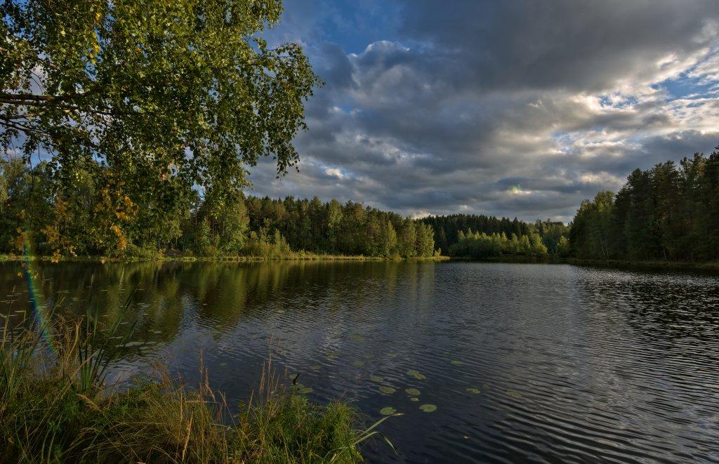 Отзывы о рыбалке на Пионерском озере